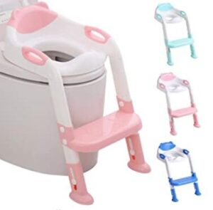 potty seat and stool