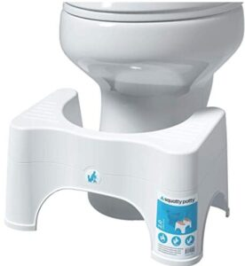 potty seat with stool