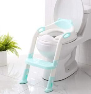 potty seat and step stool combo