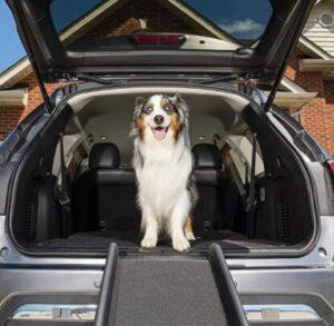 dog car step stools
