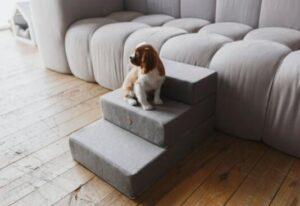 cozy step stools for small pets