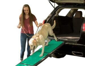 dog step ramp for SUV